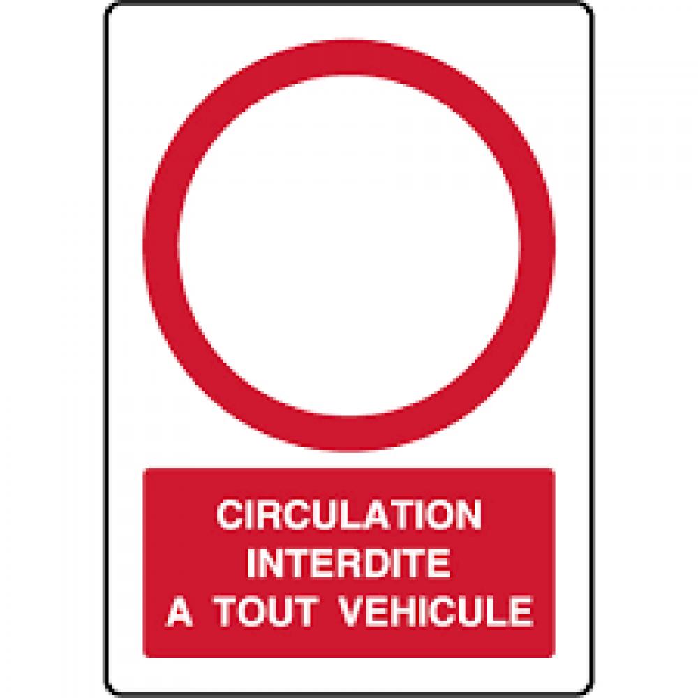 PROLONGATION  TRAVAUX AVENUE DU LAURAGAIS